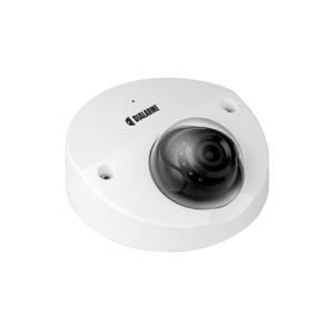 Caméra de sécurité discrète, antivandale pour intérieure et extérieure